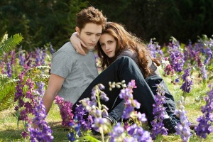 twilight-breaking2